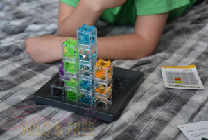 Gravity Maze-Engage the Brain and have Fun too