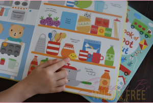 Usborne Things to Spot Book for your Preschooler