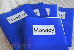 Daily Folder System for One Student