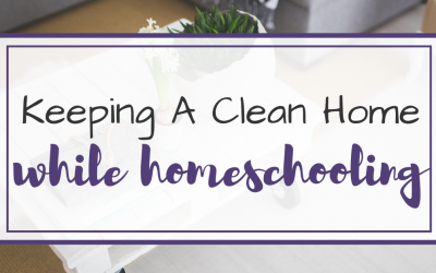 House Cleaning Tips for Homeschool Moms
