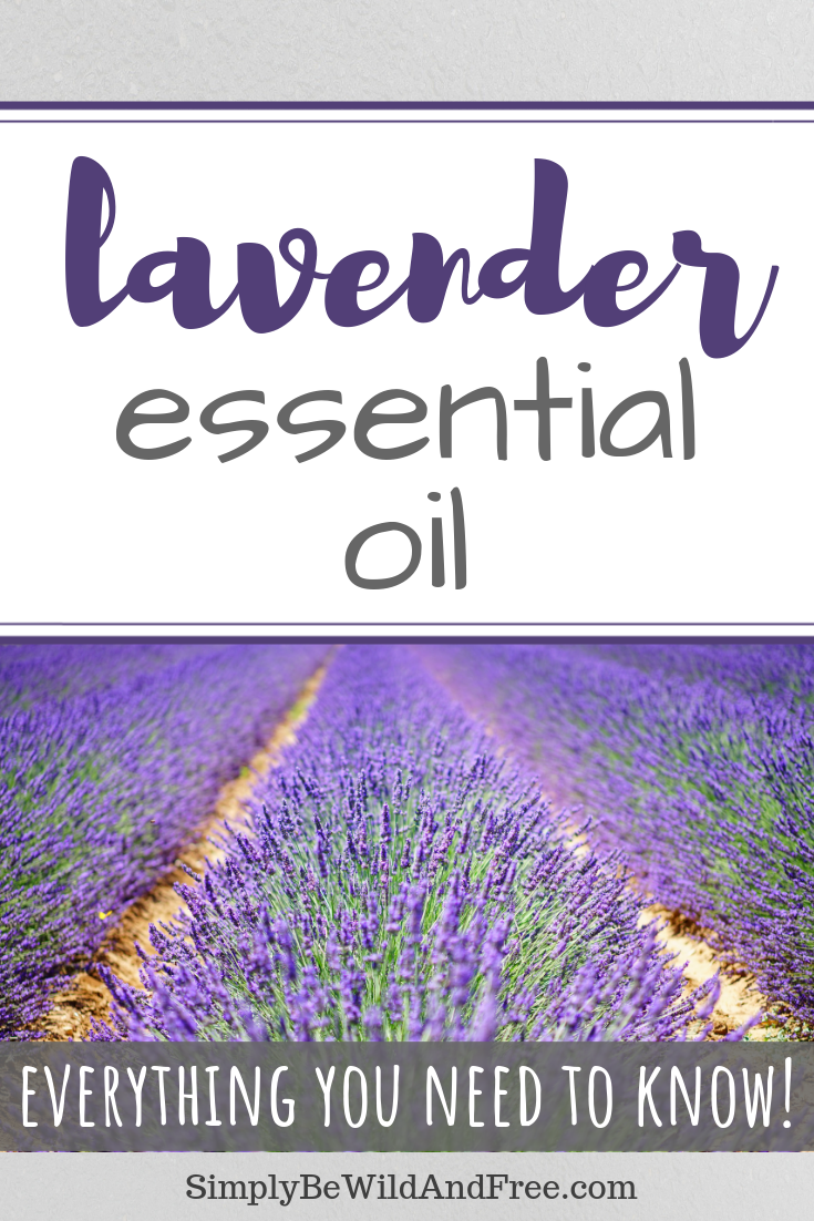 Young living essential oils. Learn how to use lavender essential oil for everything! Tips for applying essential oils, how to diffuse essential oils, and what the best uses are for lavender essential oil. Lavender essential oil can be used for cooking, to calm your cranky toddler, to relieve your itchy skin and allergies, plus promote relaxation! Use lavender oil for your kids and home. #youngliving #essentialoils #lavender #lavenderoil