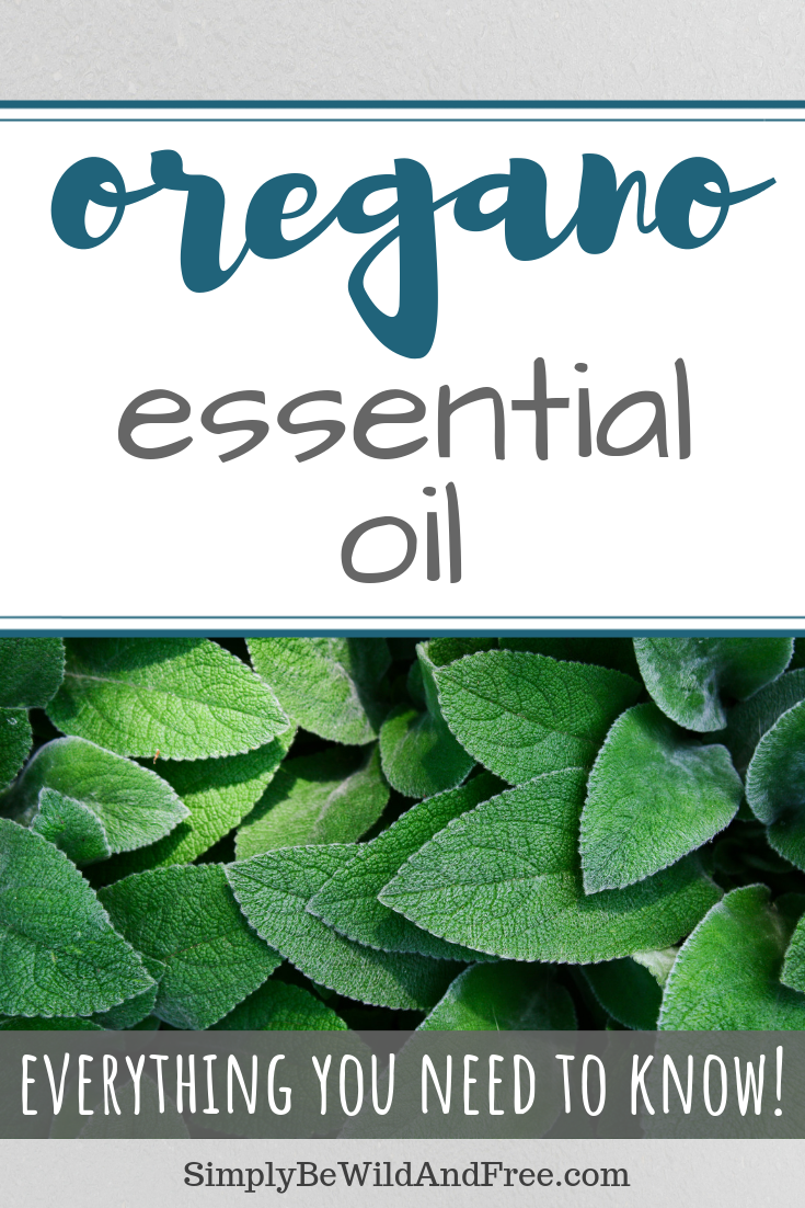 Young living essential oils. Learn how to use oregano essential oil in every day life! Tips for applying essential oils, how to diffuse essential oils, and what the best uses are for oregano essential oil. Oregano essential oil can be used for cooking, to heal infections, and promote overall wellness. Prevent the flu and other harmful viruses with oregano essential oil! Use as an antibiotic! #young living #essentialoils #oregano #EO