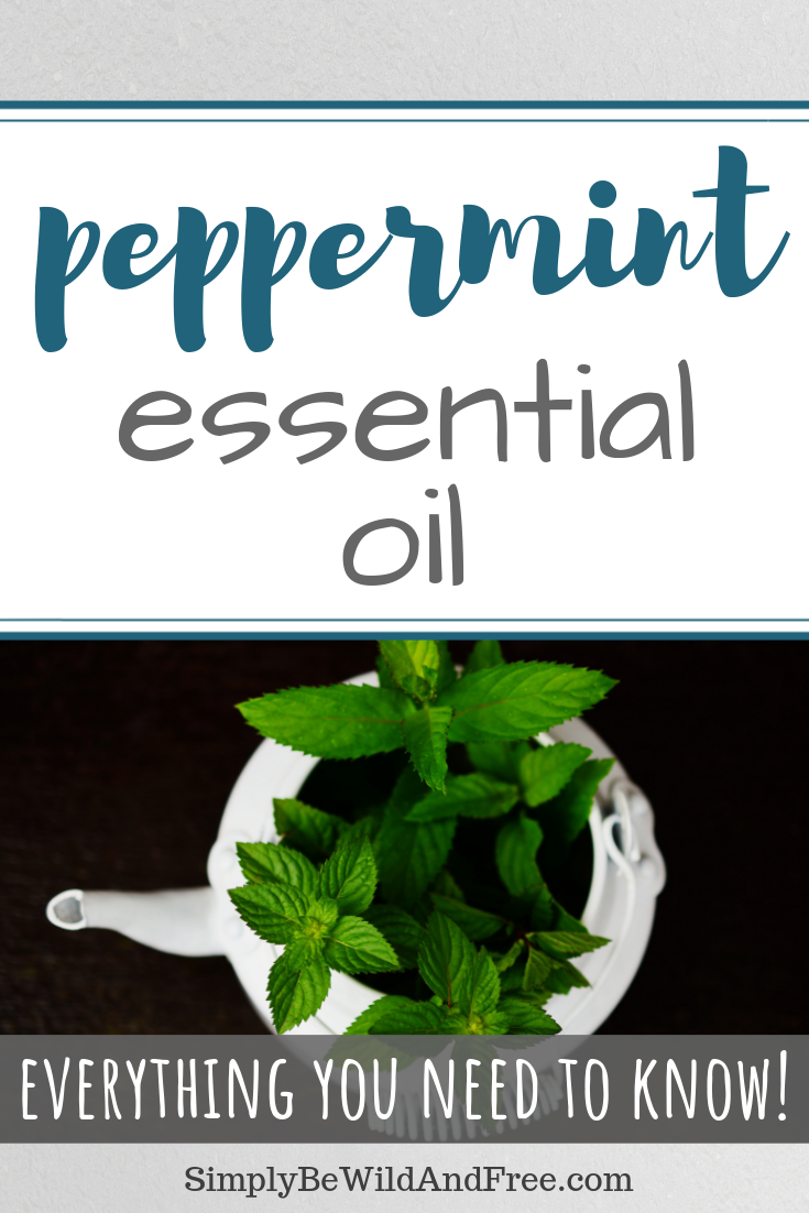 Young living essential oils. Learn how to use peppermint essential oil in every day life! Tips for applying essential oils, how to diffuse essential oils, and what the best uses are for peppermint essential oil. Peppermint essential oil can be used to break your child\'s fever, ease severe congestion, and can even be baked into brownies or cookies! Peppermint is versatile and useful!  #young living #essentialoils #peppermint #EO #kids #health