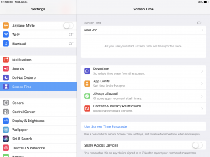 Use built in iOS parental controls and iOS screen time settings
