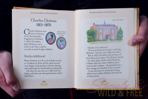 Illustrated Stories by Charles Dickens